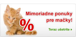 Mimoriadne ponuky pre mačky