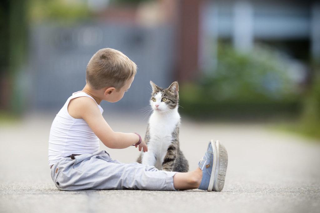 Dieťa a mačka