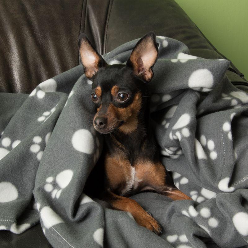 pes deka