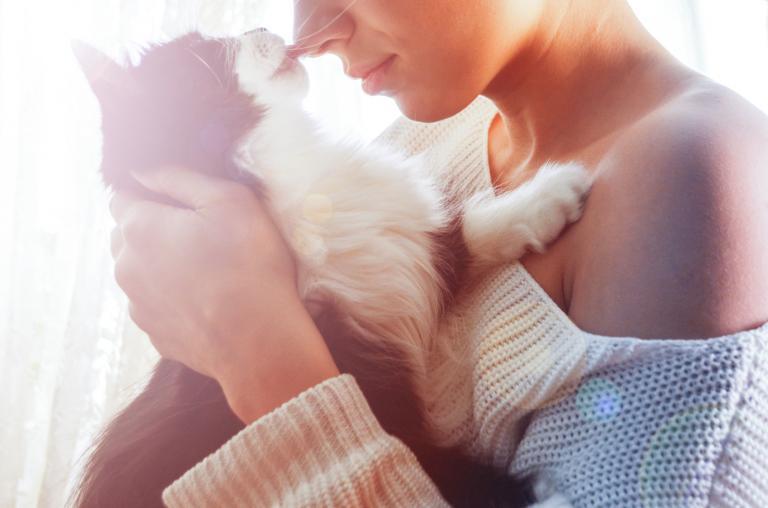 mačka a toxoplazmóza