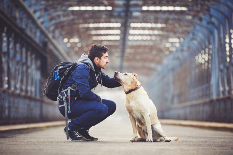 Muž so svojím žltým labradorským retrieverom na starom moste