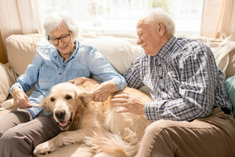 pes so starými rodičmi