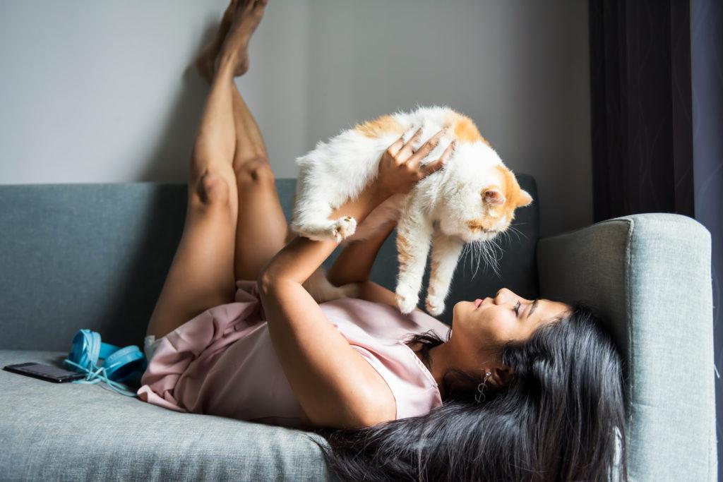 Socializácia mačky