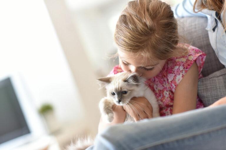 mačiatko s dievčaťom
